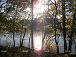 Griggs Reservoir